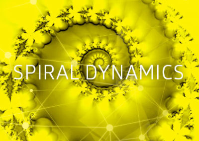 új IEC_web_topics_spiraldynamics_color_500x300 (1)
